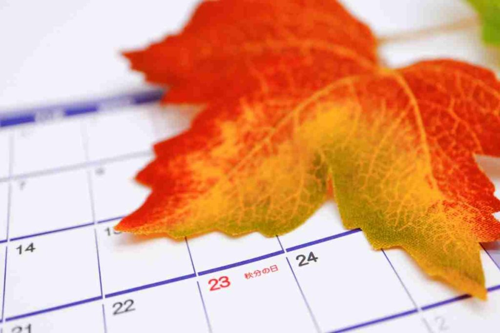 Autumn Equinox 2021 Timing, Weather and More for First Day of Fall in Illinois