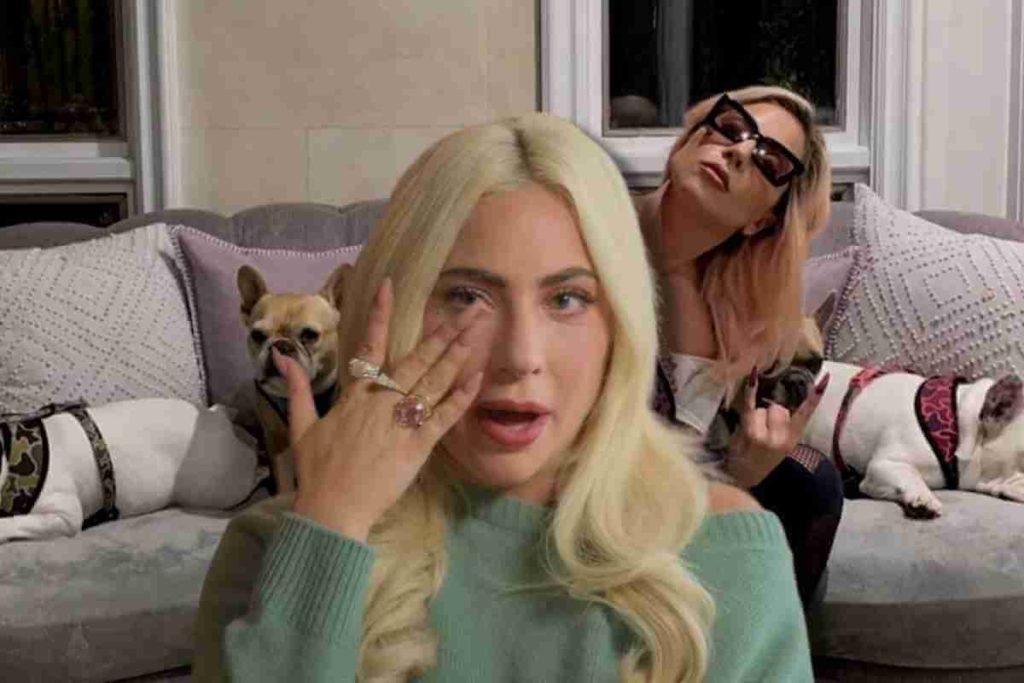 Lady Gaga's Dog Walker Describes Horrific Shooting, Says Gaga Was an Angel